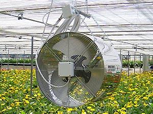 چرا باید در گلخانه ها از فن استفاده کرد - هیتر اسکندری