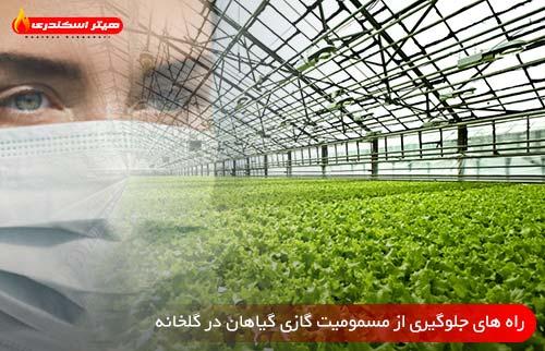 راه های جلوگیری از مسمومیت گازی گیاهان در گلخانه - هیتر اسکندری